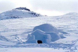 iglo-sneeuw-vertalen